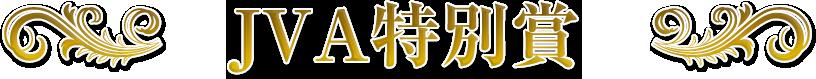 JVA特別賞